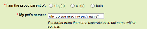 pet's name - my answer