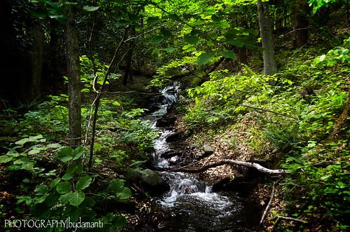 virginia floyd creeks rockcastlecreek rockcastlecreektrail