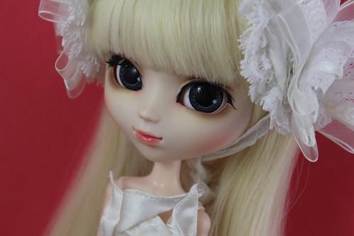Dahlia Cinderella