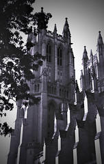 Washington National Cathedral 1