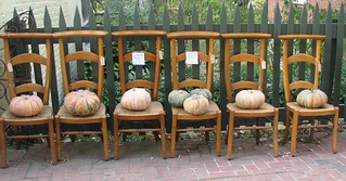 Pumpkins and chairs v2