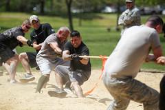 sports, tug of war,