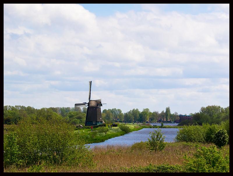 Nice view - windmill