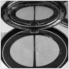 powder(0.0), wheel(0.0), human body(0.0), eye(0.0), organ(0.0), eye shadow(1.0), circle(1.0), cosmetics(1.0),
