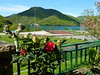 Flor y jardines del Hotel Rural Quinto Real en Eugi - Navarra