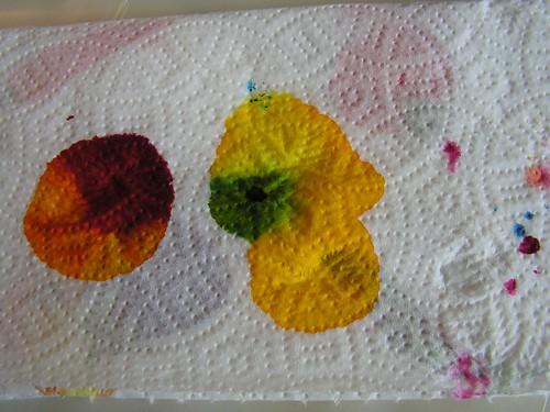 essais teinture - PICT1045