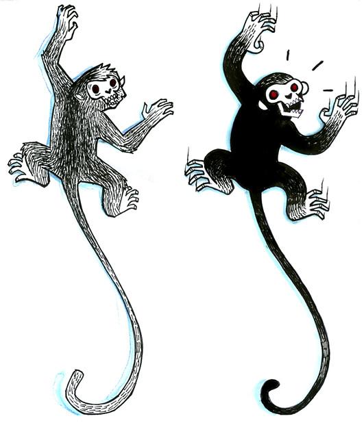 scimmiafrancesco1