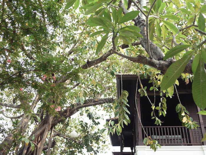 137 Pillars Chiang Mai-16