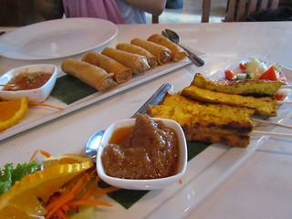 Tofu Satay and Spring Rolls at Araya's