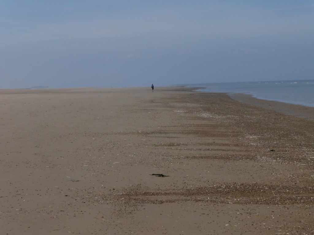 42 Following a ghost on Holkham Beach