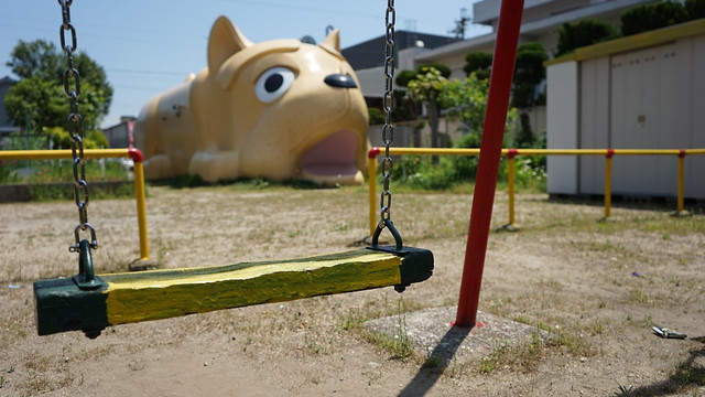 dog_sirakane_11