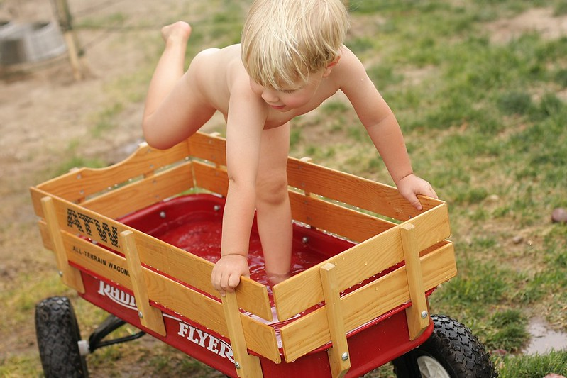 wagon pool