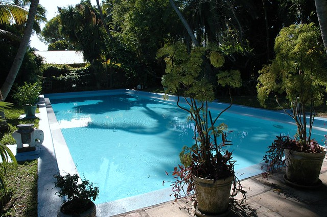 Pool, Hemingway House, Key West