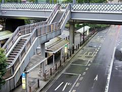 metropolitan area, highway, lane, overpass, bridge,