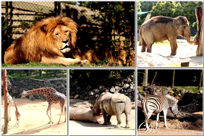 20120226_Zoo 009