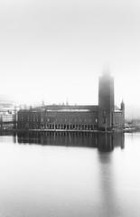 City Hall Fog