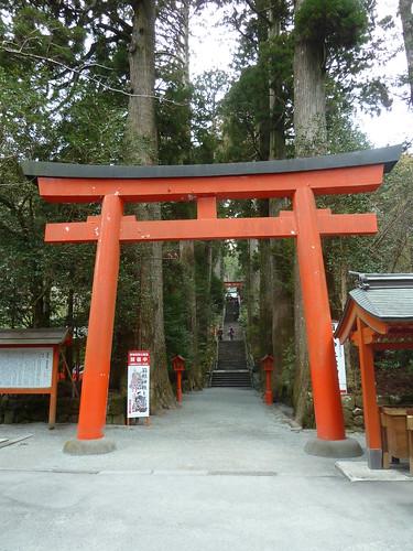 箱根神社 第四鳥居から第五鳥居の階段