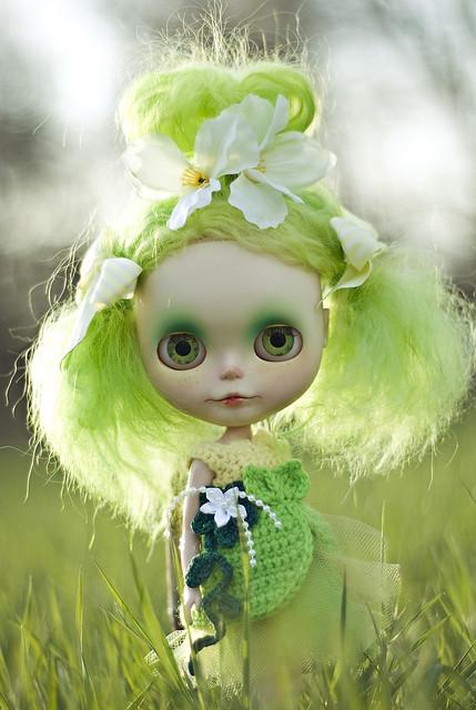 Meet LilyBean