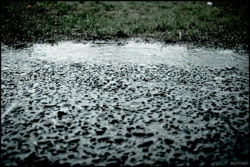 Pizo, lluvia by MarcosCousseau