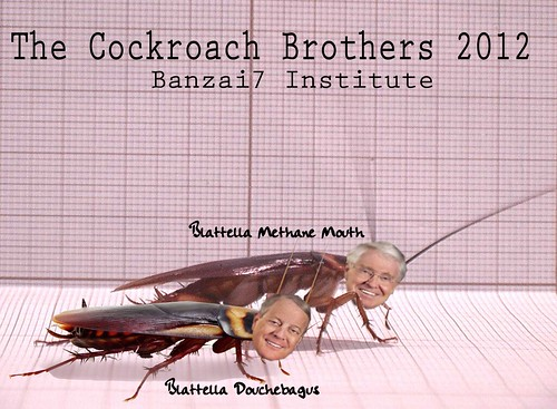 THE COCKROACH BROTHERS by Colonel Flick