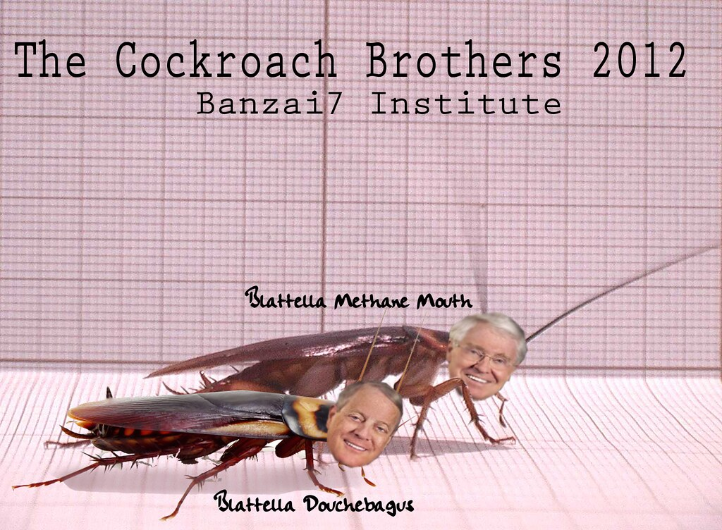 THE COCKROACH BROTHERS