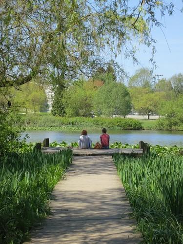 Peaceful picnic