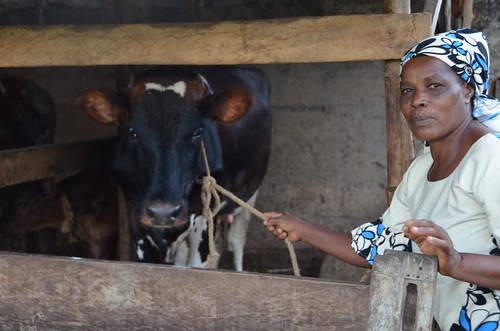 Faustina Akyoo,  dairy farmer in Tanga, Tanzania.