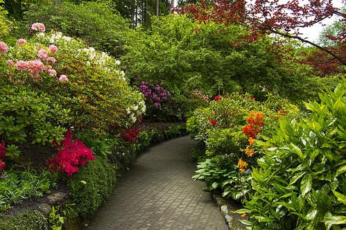 2014-05-22_037 Butchart Gardens