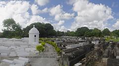 Kolkata's Jewish Cemetery under restoration