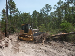 soil, vehicle, forest, construction equipment, bulldozer,