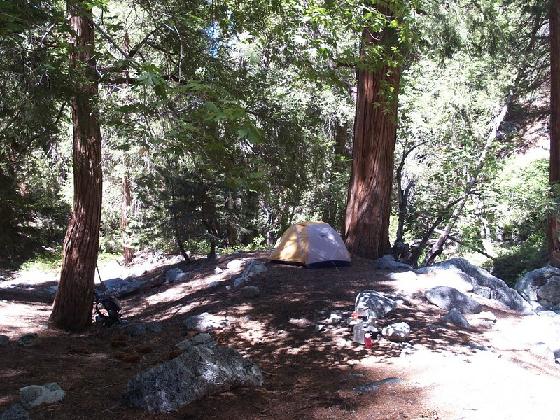 Our nice spot under a huge old cedar tree at Commanche Camp