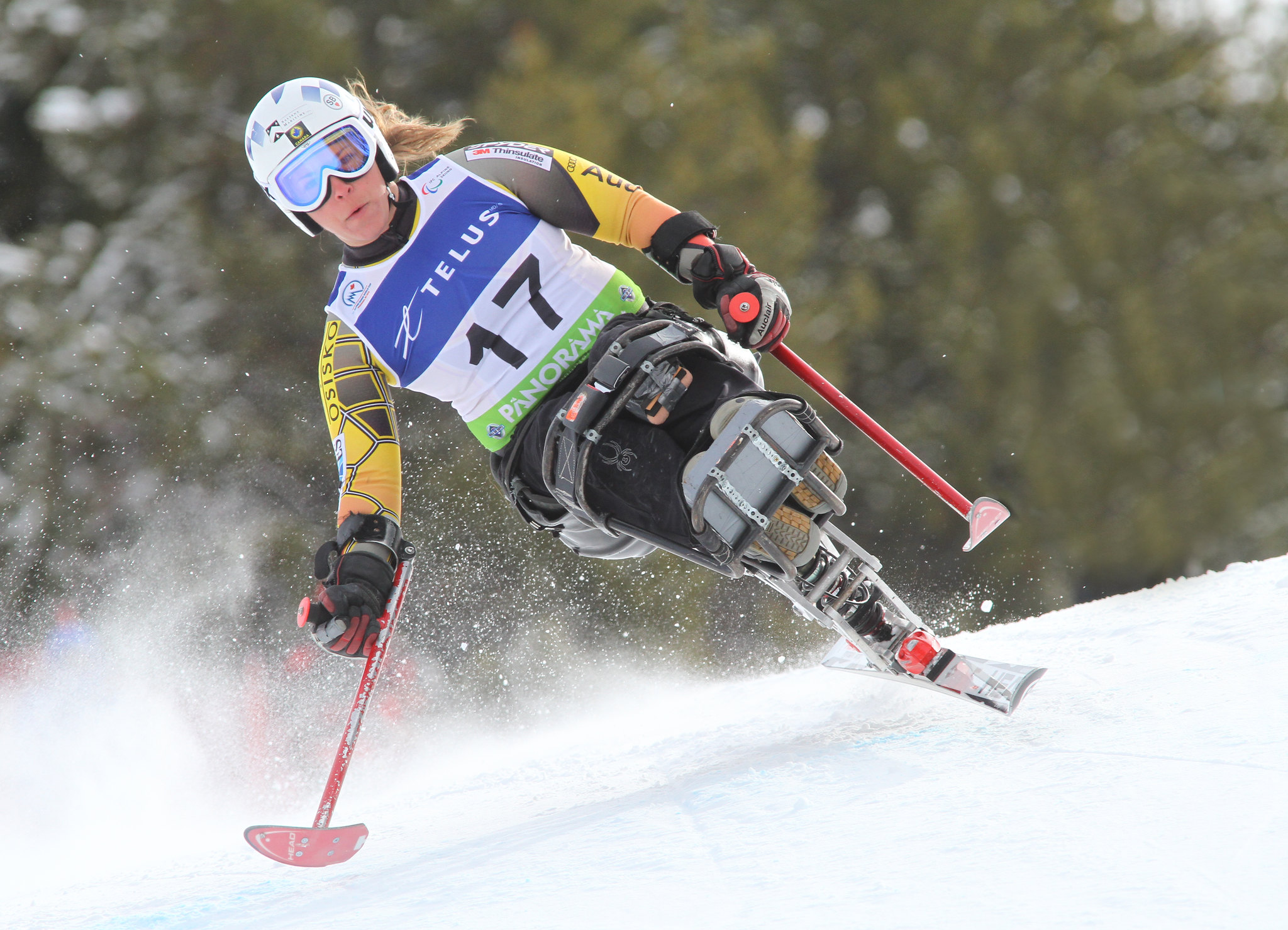 Kimberly Joines skis an IPC World Cup super-G in Panorama, B.C.