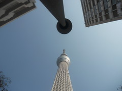 Lamp Post and Sky Tree
