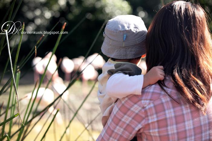 20120226_Zoo 010
