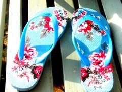 shoe(0.0), limb(0.0), leg(0.0), art(1.0), pattern(1.0), footwear(1.0), sandal(1.0), flip-flops(1.0),