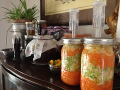 Extending the Fermentation Zone by mikeysklar