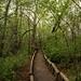 Parc-nature de l'Ile-de-la-Visitation by nuria.mpascual