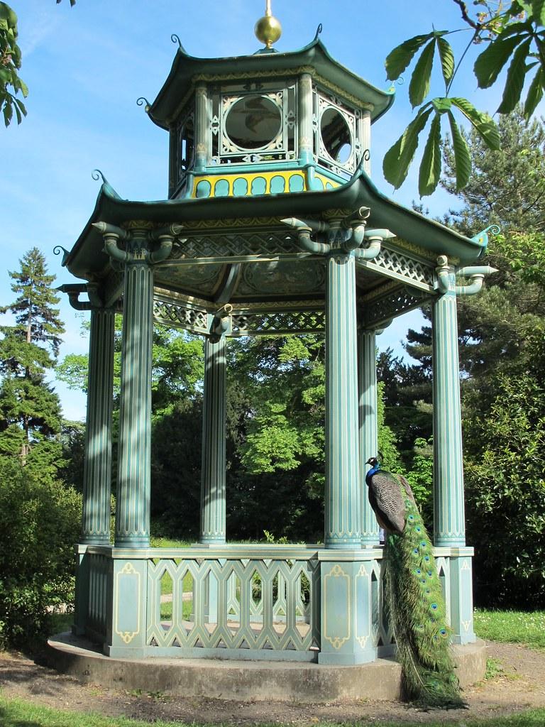 Paon et pagodon jardin de bagatelle bois de boulogne for Bagatelle jardin paris