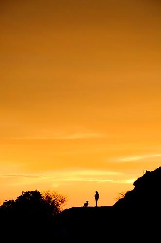 travel winter sunlight india mist mountain colour tourism nature silhouette fog clouds sunrise trekking trek painting landscape dawn glow colours tour adventure trail destination layers sequence bengal himalayas enroute sandakphu tonglu