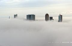 Another misty monday... | Rotterdam | Mist | Euromast