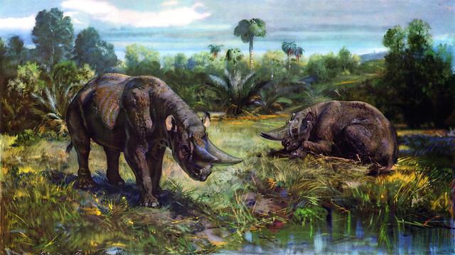 壁纸 大象 动物 油画 500_280