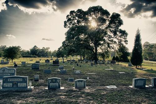 cemetery landscape texas outdoor
