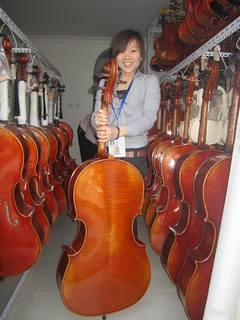 the cello
