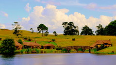 The Green Dragon - Hobbiton - Matamata, New Zealand