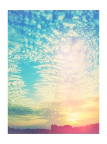 Skies