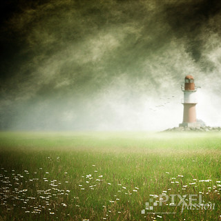 ~ the lighthouse ~