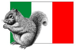 la guerra allo scoiattolo grigio