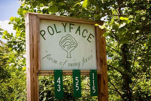 Polyface Farm 2012-0147.jpg