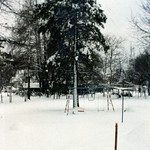 Snow in Roxboro, March 1981