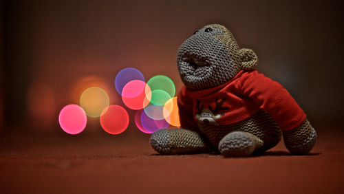 329/365 - Festive Monkey by Samantha Warren Photography